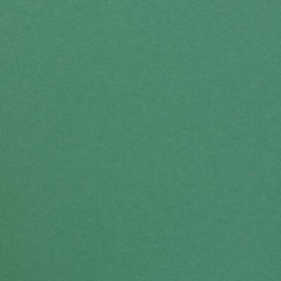 Florence Cardstock smooth A4, 216g, 10 Blatt, Farbe: spa