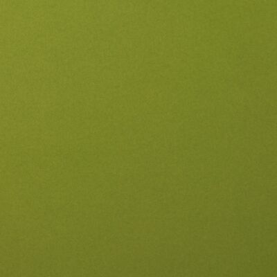 Florence Cardstock smooth 30,5 x 30,5, 216g, 20 Blatt, Farbe: olive