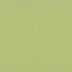 Florence Cardstock texture A4, 216g, 10 Blatt, Farbe: anise